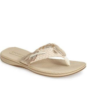 Sperry Topsider 'Parrotfish' thong sandal